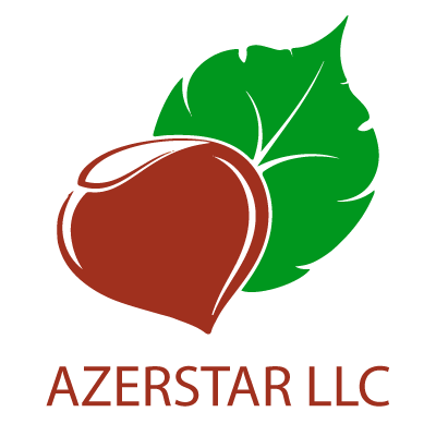 Loading Azerstar website